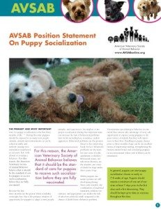 avsab-puppy-socialization
