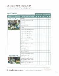 socialization-checklist