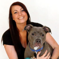 My Journey to Adopting a Pit Bull