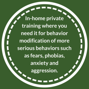 In-Home Private Dog Training for behavior modification