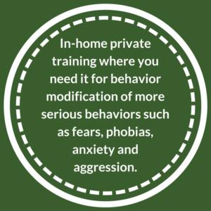 In-Home Private Dog Training for behavior modification