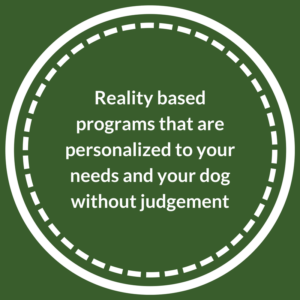 Reality based and personalized dog training programs
