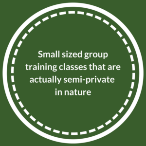 Semi-private group dog training classes