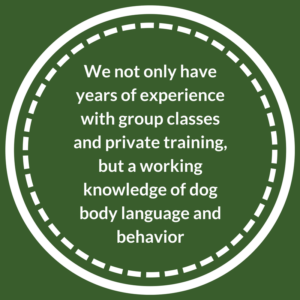 We have years of experience with group classes and private training and a knowledge of dog body language and behavior